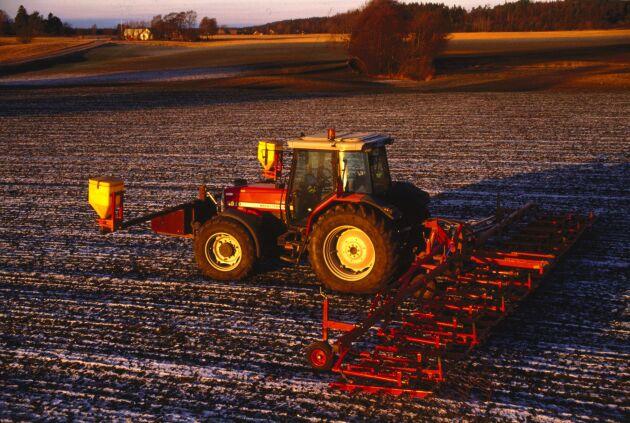 Sådd av fånggröda är ett välbeprövat sätt att minska näringsförlusterna ur jordbruksmark.