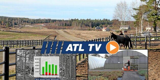 ATL TV: Stor prisskillnad på maskinreparationer