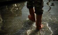 Myndighetstvist leder till översvämning hos lantbrukare