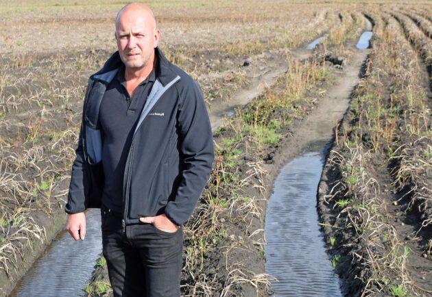 Potatisodlaren Magnus Magnusson uppskattar att runt 10 procent av hans skörd har skadats av regnet.