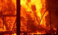 Förlorar tvist efter brand där topphäst dog