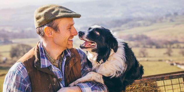 Pratar du med ditt husdjur? Det kan vara tecken på att du är intelligent