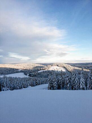 Stillheten och de vidsträckta skogarna och berget Järvsöklacken lockar turister. Skidåkning på vintern och cykling på sommaren.