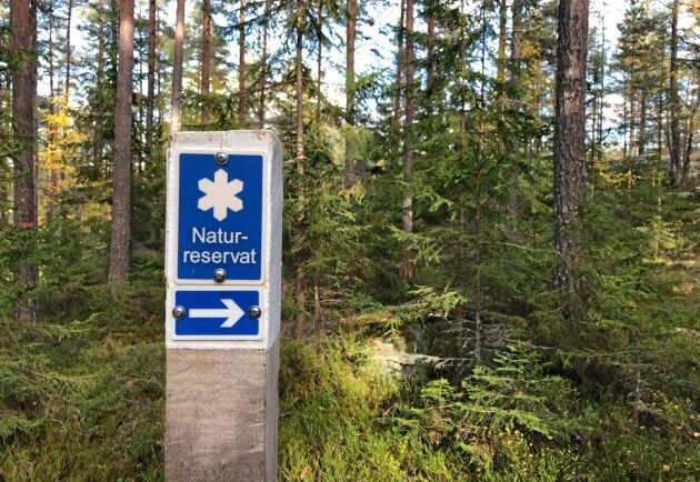 Det bildades färre nya naturreservat förra året, jämfört med 2018 och 2019.