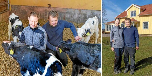 """Johanna och Arvid är rekordunga mjölkbönder: """"Det här är vår dröm"""""""
