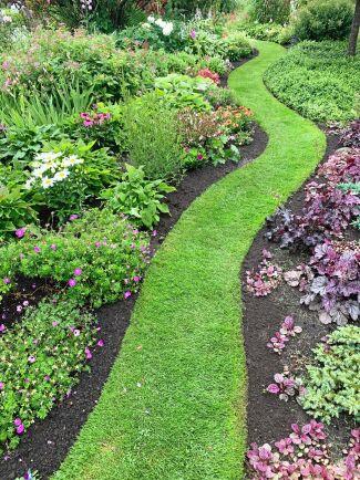Det friskt gröna gräset ringlar fram mellan rabatter i rosa toner. Här växer bland annat nävor, alunrot, astilbe och pioner.