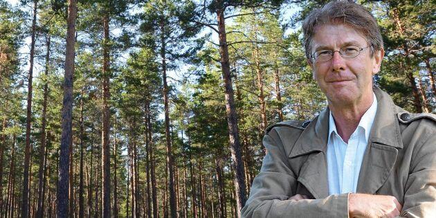 Nutidshistoria om skogen har flera kapitel