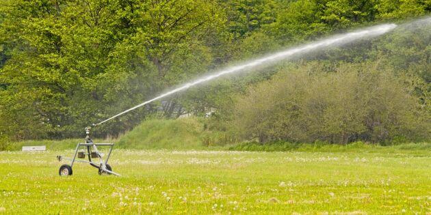 Dags att planera för bevattning av säsongens grödor