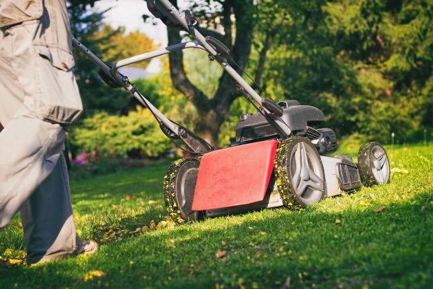 Glöm inte att rengöra knivarna ordentligt innan du ställer in gräsklipparen för säsongen.