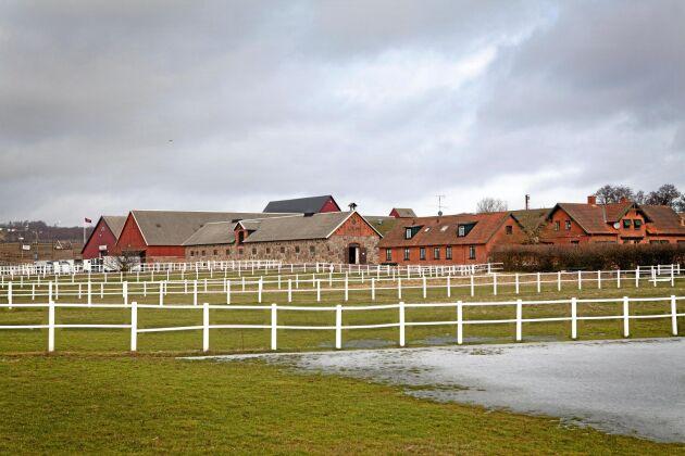Skönabäck Sweden är beläget i hästtäta Skurups kommun. Jordbruksmarken är utarrenderad.
