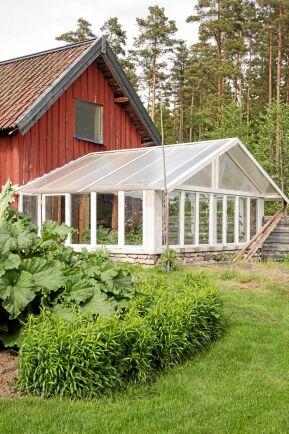 Johnnys växthus är sammanbyggt med den faluröda redskapsboden.