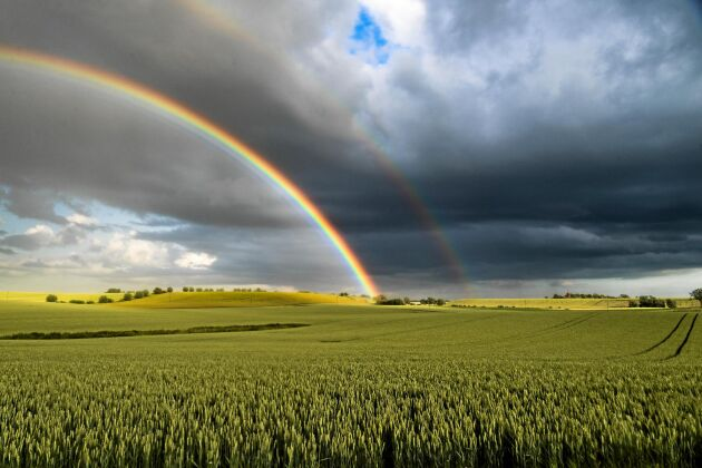 PLATS 6-10. Johan Hult i Ljungby fick en fin bild på en ovanligt kraftfull regnbåge. Enligt sägnen ska en skatt ligga där vid regnbågens slut.