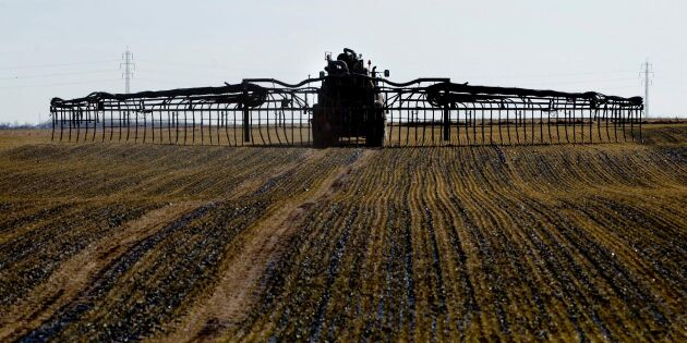 Underskott av fosfor i många fält