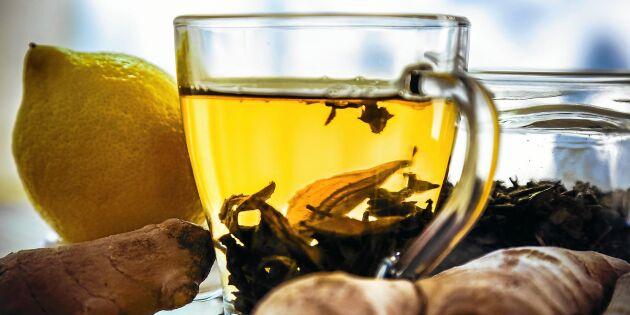 Välgörande och värmande te på färsk ingefära och citron
