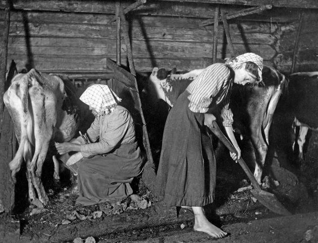 Jobbet som piga var hårt, långa arbetsdagar och uselt betalt.