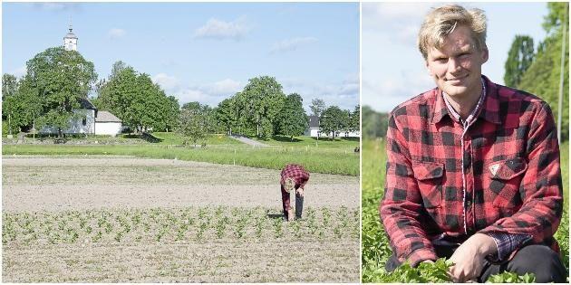 Ung odlare satsar stort på grönsaker