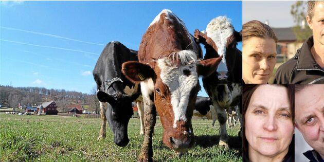 Bönder om det osäkra mjölkåret 2018