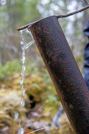 Prospekteringsföretagen har lämnat rostiga borrör i 45 graders vinkel som sticker upp flera decimeter.