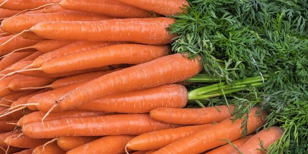 Ny metod visar om en grönsak är ekologiskt odlad eller inte