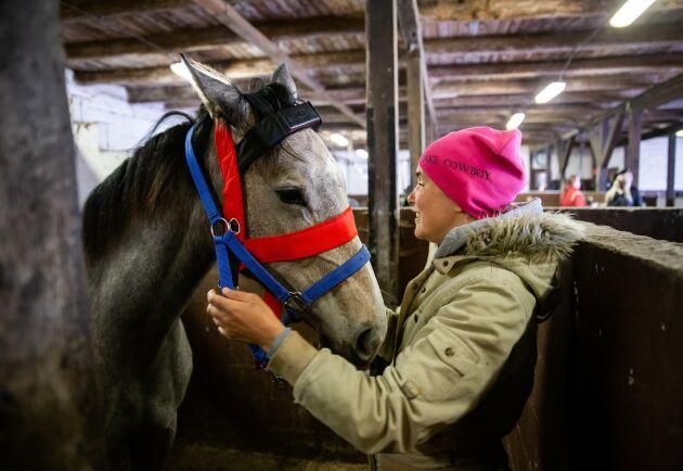 Uppkopplade. Madeleine Entin sätter fast grimman med sensorn på hästarna. Det är också hon som ska sköta tillsynen i sommar.