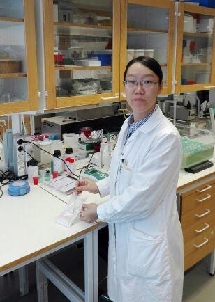 Xue Zhao, doktorand på SLU.