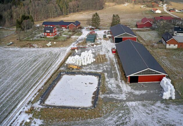 Robin Hjertman byggde själv stallet för kall lösdrift. Gården är dimensionerad för 300 djur men planen är 200 tjurar och kalvar. 130 tjurar går i väg till slakt varje år.