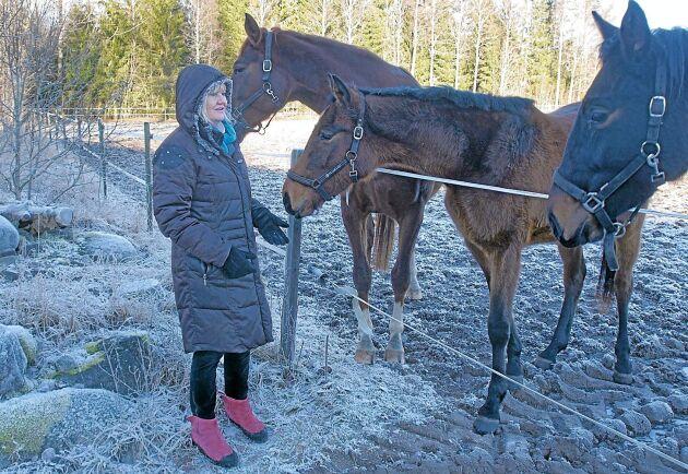Gunvor Munck Svensson föder upp unghästar hemma på gården. Florence, Tipptopp och Doobidoo är de senaste som pockar på uppmärksamhet.