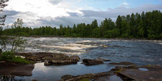Nya statliga bidrag till miljöjurister