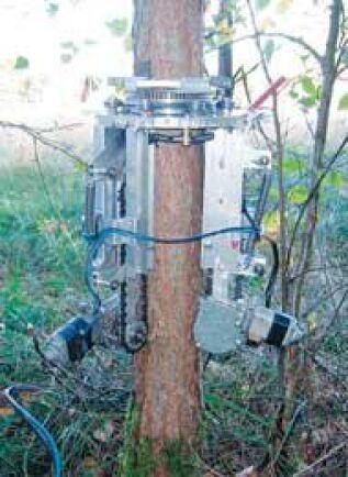 Maskinen Klas Klättermus ska, enligt uppfinnaren, kunna göra det lönsamt att stamkvista virke. Foto: Privat