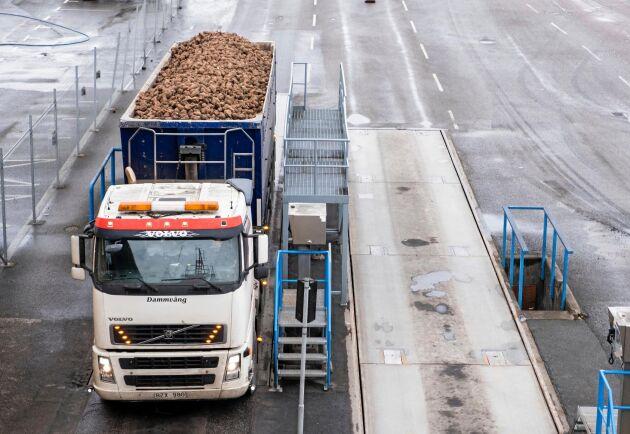 Stannar produktionen vid sockerbruket tar det ungefär två dygn att varva upp till full kapacitet igen. Arkivbild.