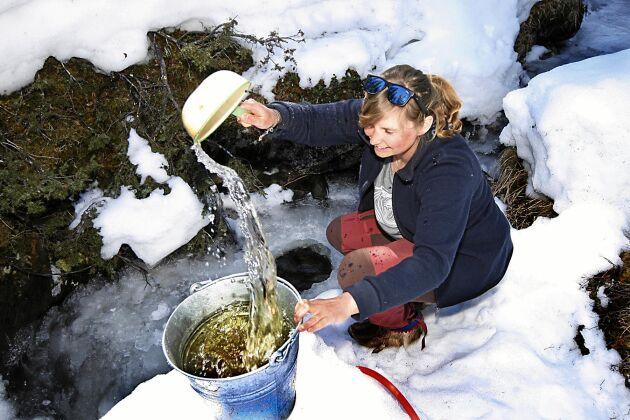 Varje dag går Sofie ner till bäcken för att hämta vatten. Men det går bara att diska och tvätta sig i det. Dricksvattnet hämtar hon i Handöl.