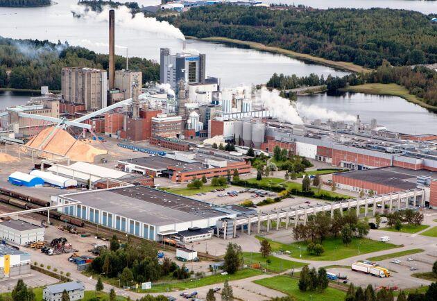Holmen har sin stora anläggning vid Iggesund och en bit bort i Friggesund ligger plantskolan som nu anklagas för att förstöra miljön. Arkivbild.