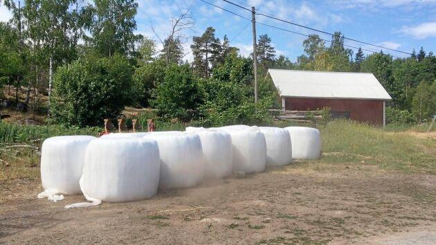 Snart kan lantbrukare som kämpar med att minska sitt klimatavtryck köpa plastfilm som baseras på återvunnet material.