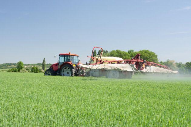 Det hittades inga otillåtna importer av växtskyddsmedel i svenska stickprov.