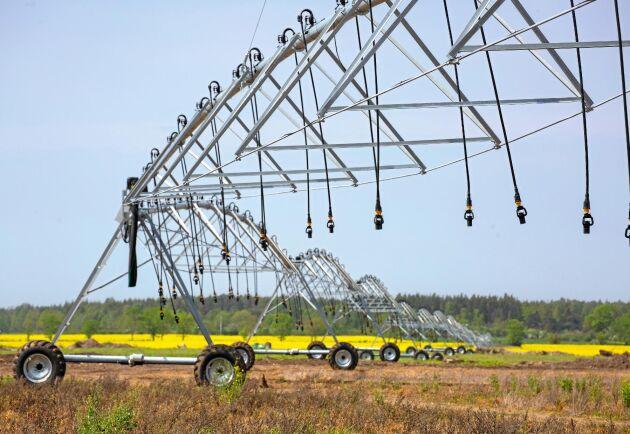Centerpivot på Klintebys gård, Gotland, når 900 meter och ska bevattna en areal på 120 till 125 hektar.