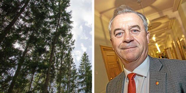 """""""Handlingsprogram presenteras inom kort"""""""