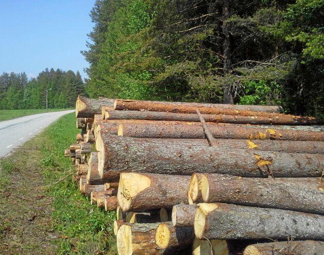 Skogsutredningen har sin startpunkt i slitningar mellan miljö- och produktionsmålen i skogen.
