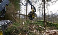 Kritik mot skogsprogrammet