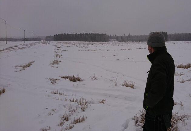 Fredrik Lindh i Burträsk på ett kornfält som inte hann tröskas i år.