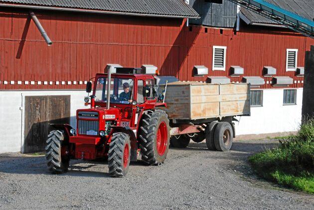 Volvo BM T814. Stordragaren från Eskilstuna som idag tycks stå högt på samlarnas önskelista. Med sin sexcylindriga turbomotor charmar den besökare på veteranträffar.