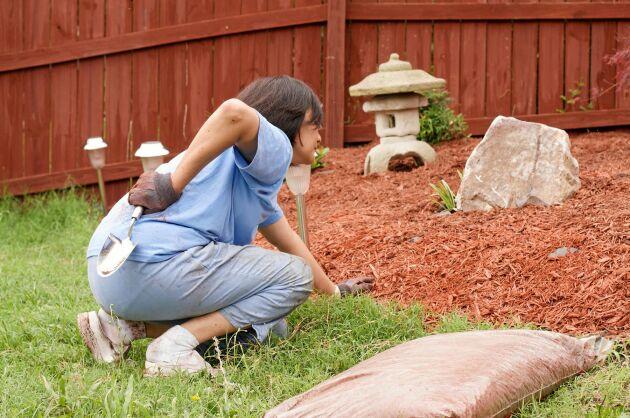 Akta ryggen när du ska ut och gräva! Ergonomen hjälper dig att få en smärtfri odlingssäsong.