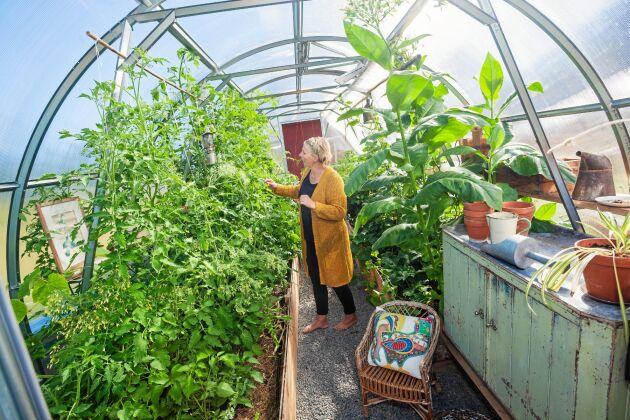 Maria tycker mycket om sköta odlingarna av egna grönsaker och målet är att bli mer självförsörjande.