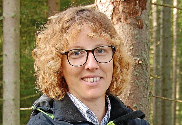 """""""Det finns en missuppfattning om att Skogsstyrelsen inte rekommenderar fällor för granbarkborre, men för privata skogsägare kan det vara ett bra komplement"""", säger Kerstin Ström, ledare för Skogsstyrelsens projekt Stoppa borrarna."""