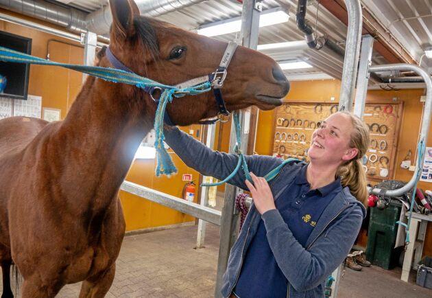 Johanna Svensson är en av tre lärare på utbildningen. Hon utbildade sig i Skara och började jobba som hovslagare på Wången 2007.