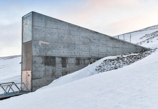 Det globala frövalvet på Svalbard är världens största säkerhetslager för frön. Där kan genbanker utan kostnad förvara kopior på sina samlingar.