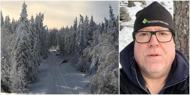 Stor risk för snöbrott i norra Hälsingland