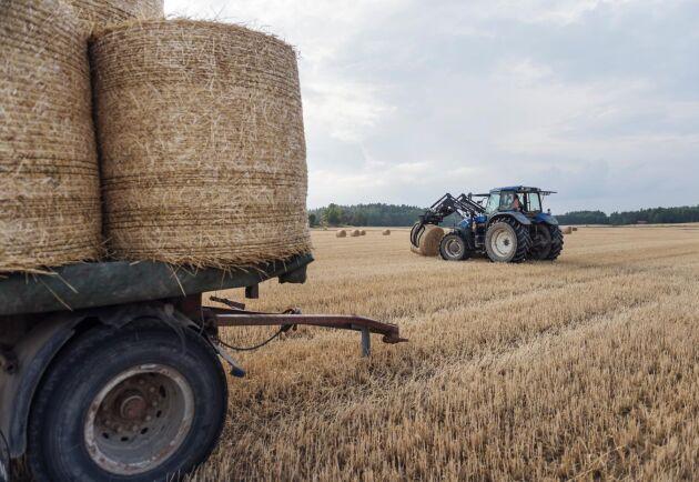 Sverige får rätt av EU-domstolen i en tvist om kontroller av jordbruksstöd.