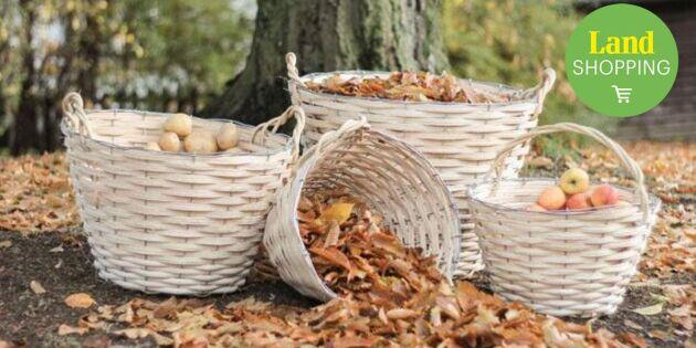 Carinas handflätade korgar – älskad trädgårdsfavorit från vår till höst
