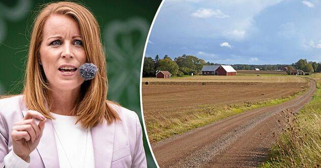 Centerpariets partiledare Annie Lööf gick på onsdagen ut med nyheten om skattesänkningen på Twitter.