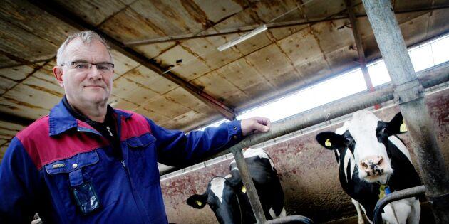 Hantoft säger nej till viltutfodring